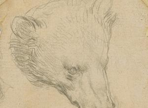 "Leonardo da Vinci, ""Head of a Bear"" drawing"