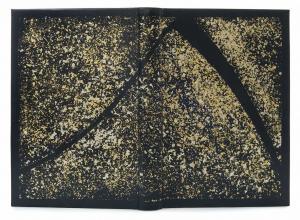 Thomas Hosking's goatskin binding of Mort
