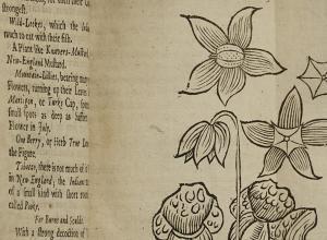 John Josselyn's New-Englands Rarities Discovered